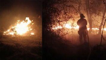 Adil Öksüz'ün çanta gömdüğü iddia edilen bölgede orman yangını