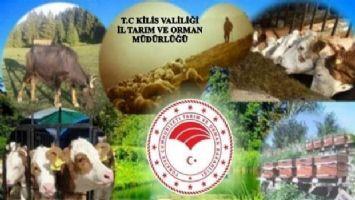 Kilis'te çiftçilere 5 milyon 404 bin liralık ödeme yapıldı